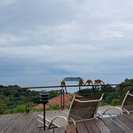 Monkeys and view from pool deck