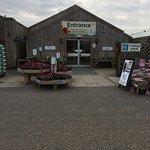 صورة فوتوغرافية لـ Roxton Garden Centre