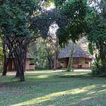 Sefapane Lodge and Safaris Foto