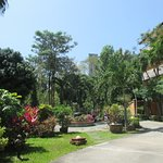 Photo of Riviera Resort Pattaya