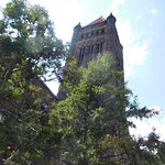 Altgeld Hall Tower Photo