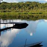 Bilde fra Napo Wildlife Center Ecolodge