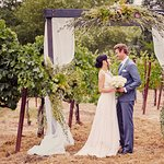 Vineyard Weddings right on Property