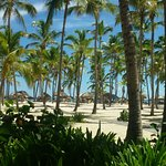 Catalonia Bavaro Beach, Casino & Golf Resort Foto