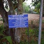 Foto de Premier Hotel The Winkler