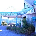 Centre d'Interprétation des Mammifères Marins