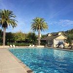 Foto de Solage, an Auberge Resort