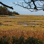 Looking out over the marsh towards the bay. Wellfleet Bay Wildlife Sanctuary