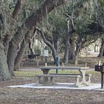Picnic table with grill at Clam Creek Picnic Area