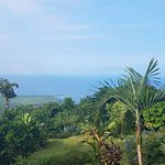 Foto di Ka'awa Loa Plantation