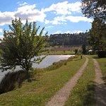 Pappelwaldsee Berghaupten