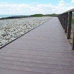 Wales Coast Path boardwalk