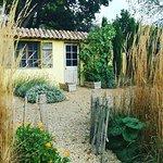 Vincent van Gogh garden