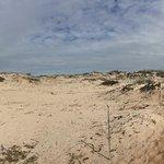 Asilomar State Beach Foto