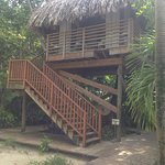 The treehouse for outdoor, couples massages