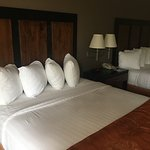 Foto de BEST WESTERN Wichita North Hotel & Suites