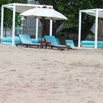 Beach lounge chairs and canape (for rent )