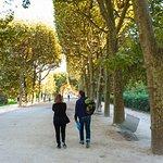 Strolling through Jardin des Plantes with Paris Walks