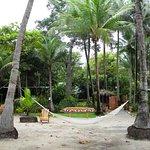 Hotel Tropico Latino Foto