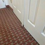 Foto de Holiday Inn Express Harrisburg SW-Mechanicsburg