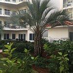 Palm Beach Foto