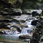 Watkins Glen State Park Foto