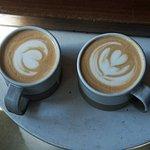 Harvest lattes