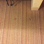 stains in carpet near vanity