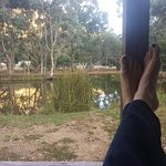 Deluxe - putting the feet up! View overlooking wetland