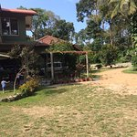 Play area around the Homestay....