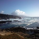 Foto de Hilton Garden Inn Monterey
