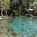 Nandini Bali Jungle Resort & Spa Φωτογραφία