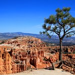 Bryce Canyon on the way from Sunrise Point to Sunset Point