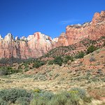 Zion Visitor Center View