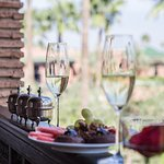 mindythelion - selman - marrakech - morocco - luxury resort reviews & content creation