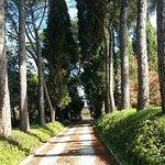 Foto de Villa Osperellone