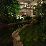"""Everywhere, the sound of rushing water! So relaxing!! Looking towards aviary. These are the """"hal"""