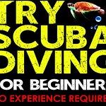 Try Scuba Diving - Puerto Rico