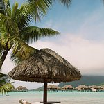 Beach - lounge chairs