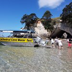 Cathedral Cove Water Taxi