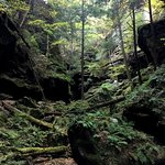 Conkles Hollow, Hocking Hills State Park, October, 2016