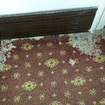 worn out and patched carpet