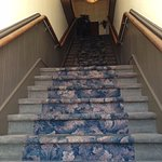 Very steep steps to all upstairs rooms!