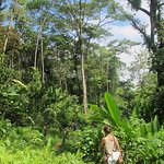 Jungle trek with hostel staff Marta