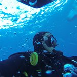 Foto de Blue Bottom Diving