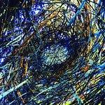 All Stickwork by Patrick Dougherty