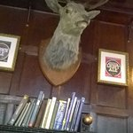The wall-mounted Stag's Head at The Reindeer.