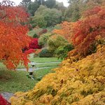 The Acers in October