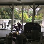 View from the breakfast table in the veranda