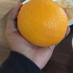 Fresh fruit at breakfast.... look at the size of the orange!